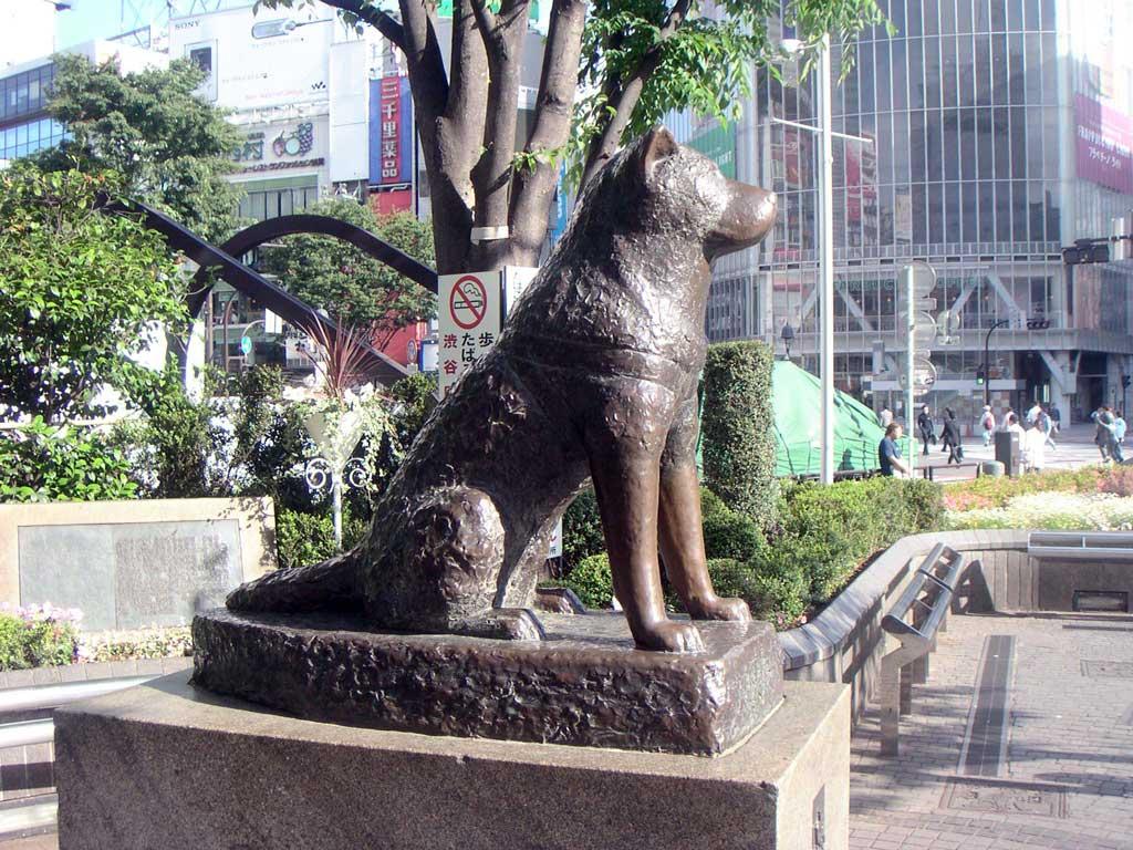 Hachiko-005