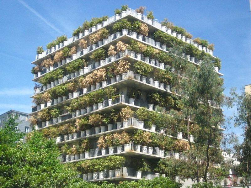 torre-da-flor-paris-001