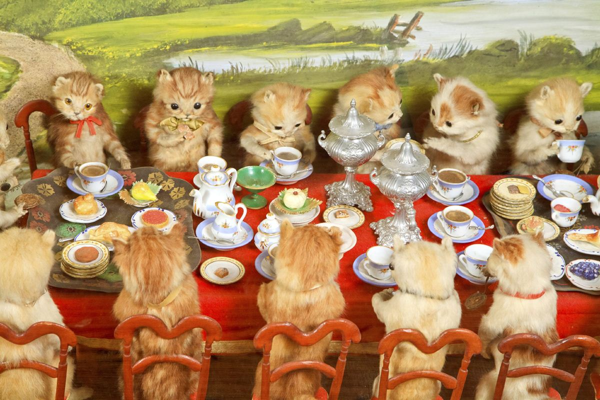 Walter-Potters-Curious-World-of-Taxidermy_001