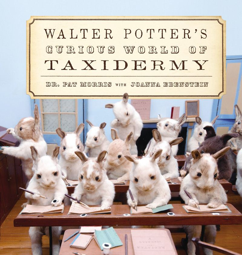 Walter-Potters-Curious-World-of-Taxidermy_003