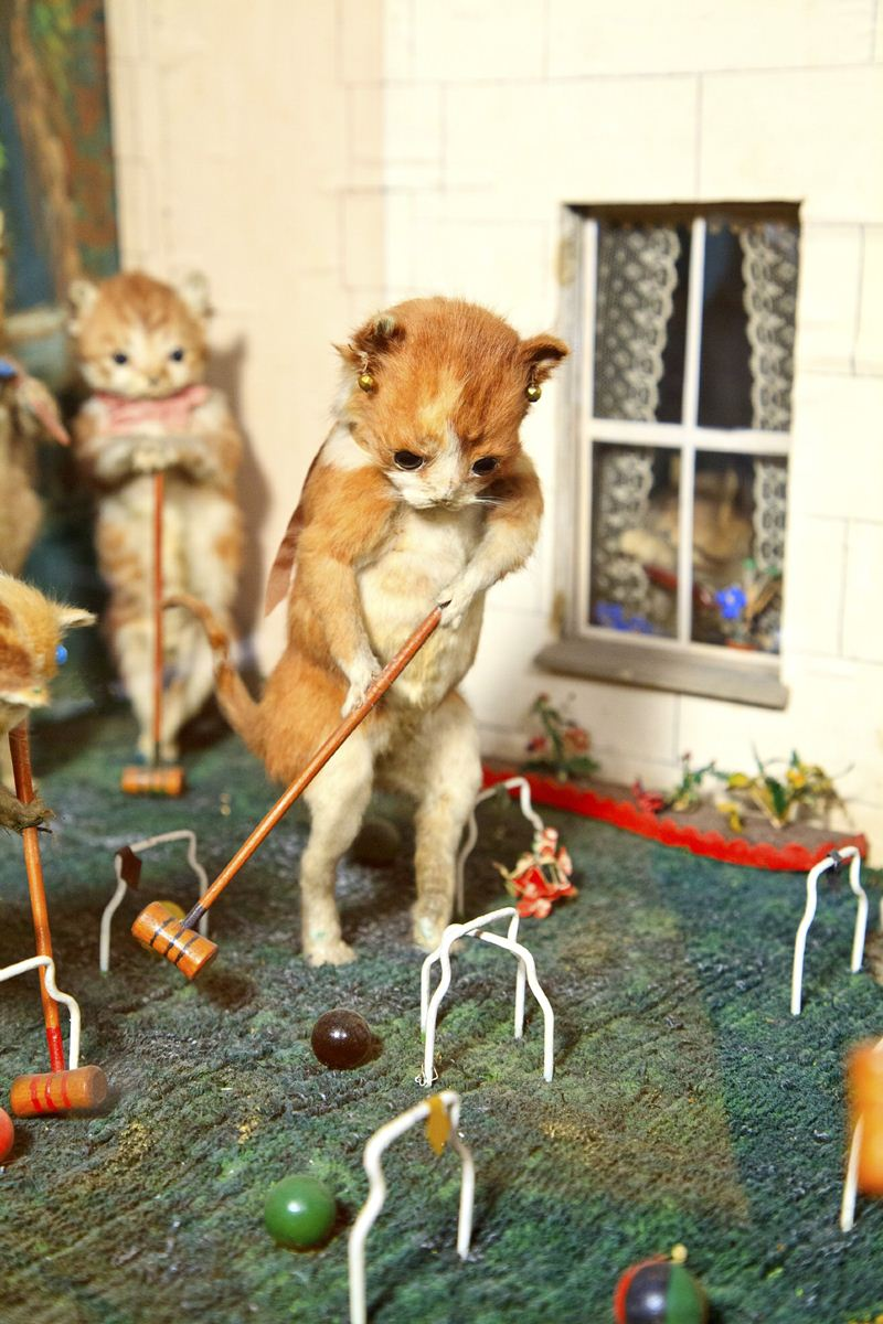 Walter-Potters-Curious-World-of-Taxidermy_004