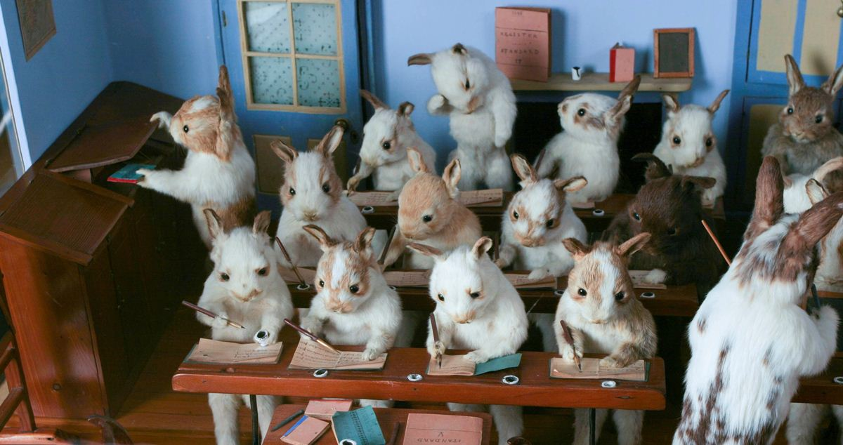 Walter-Potters-Curious-World-of-Taxidermy_005