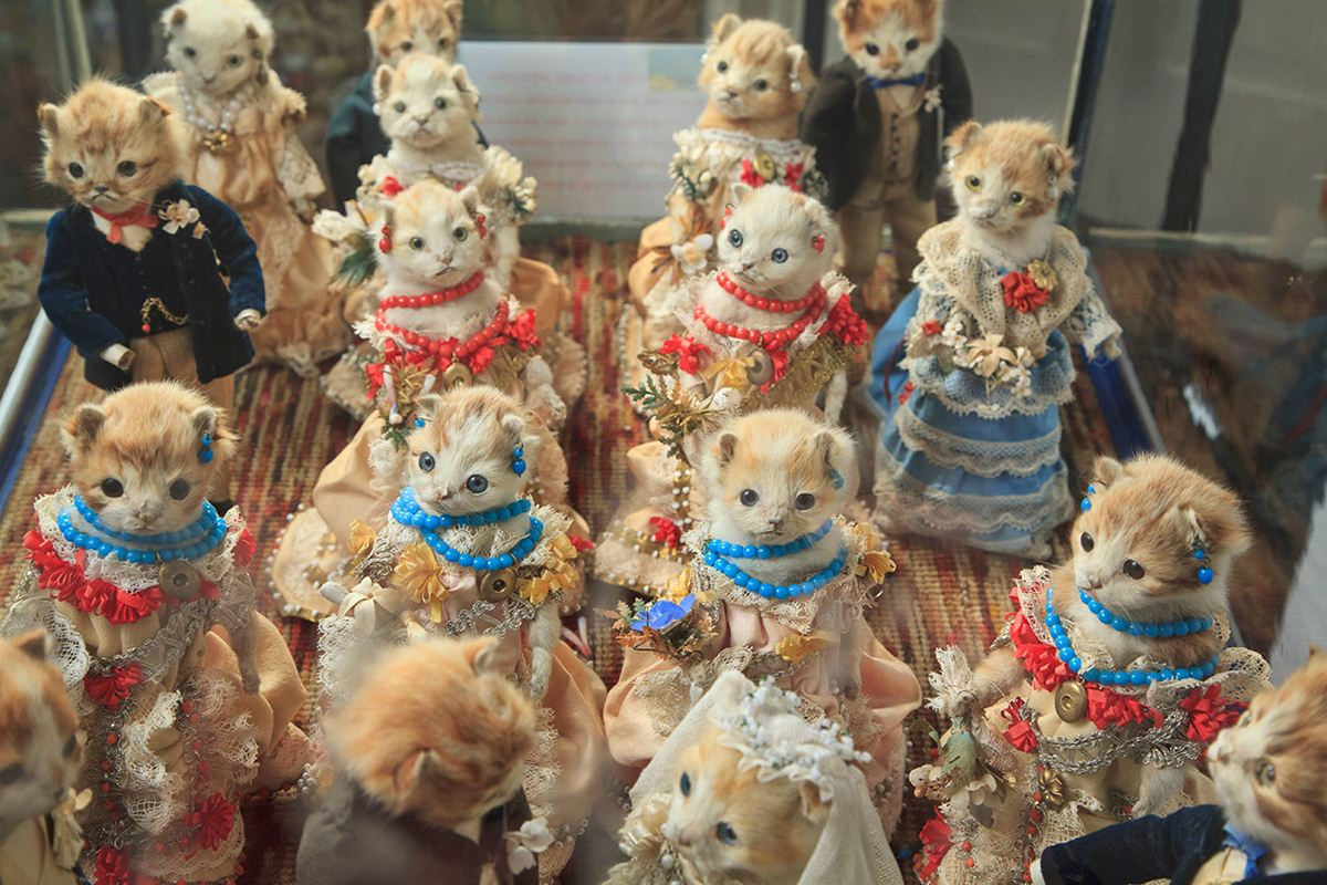 Walter-Potters-Curious-World-of-Taxidermy_007
