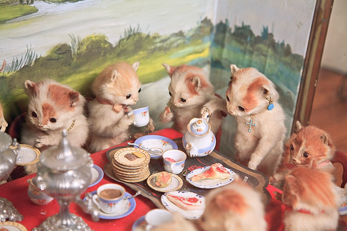 Walter-Potters-Curious-World-of-Taxidermy_009