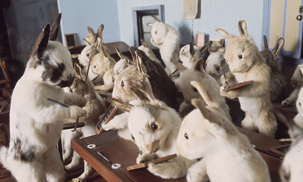 Walter-Potters-Curious-World-of-Taxidermy_017