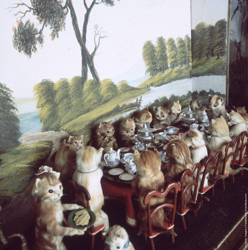 Walter-Potters-Curious-World-of-Taxidermy_020