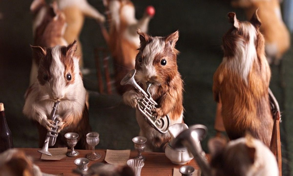 Walter-Potters-Curious-World-of-Taxidermy_021