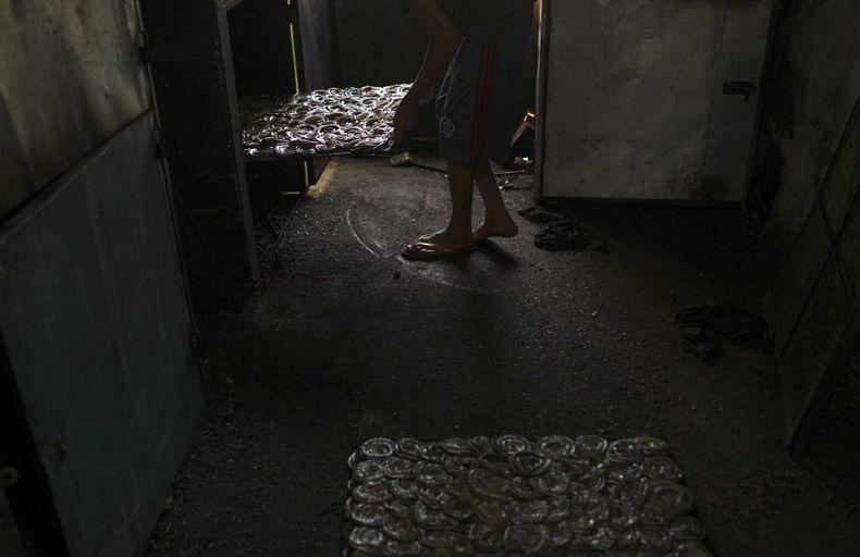 matadouro-cobras-indonesia_008