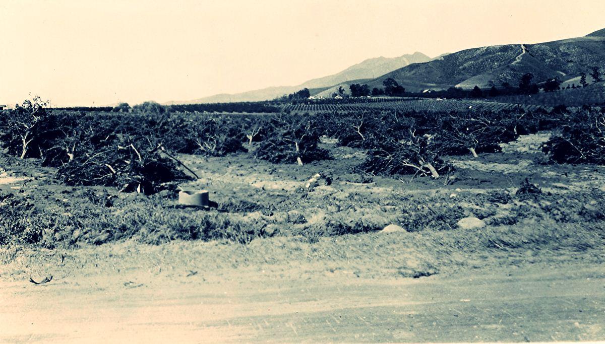 barragem-de-st-francis-california06