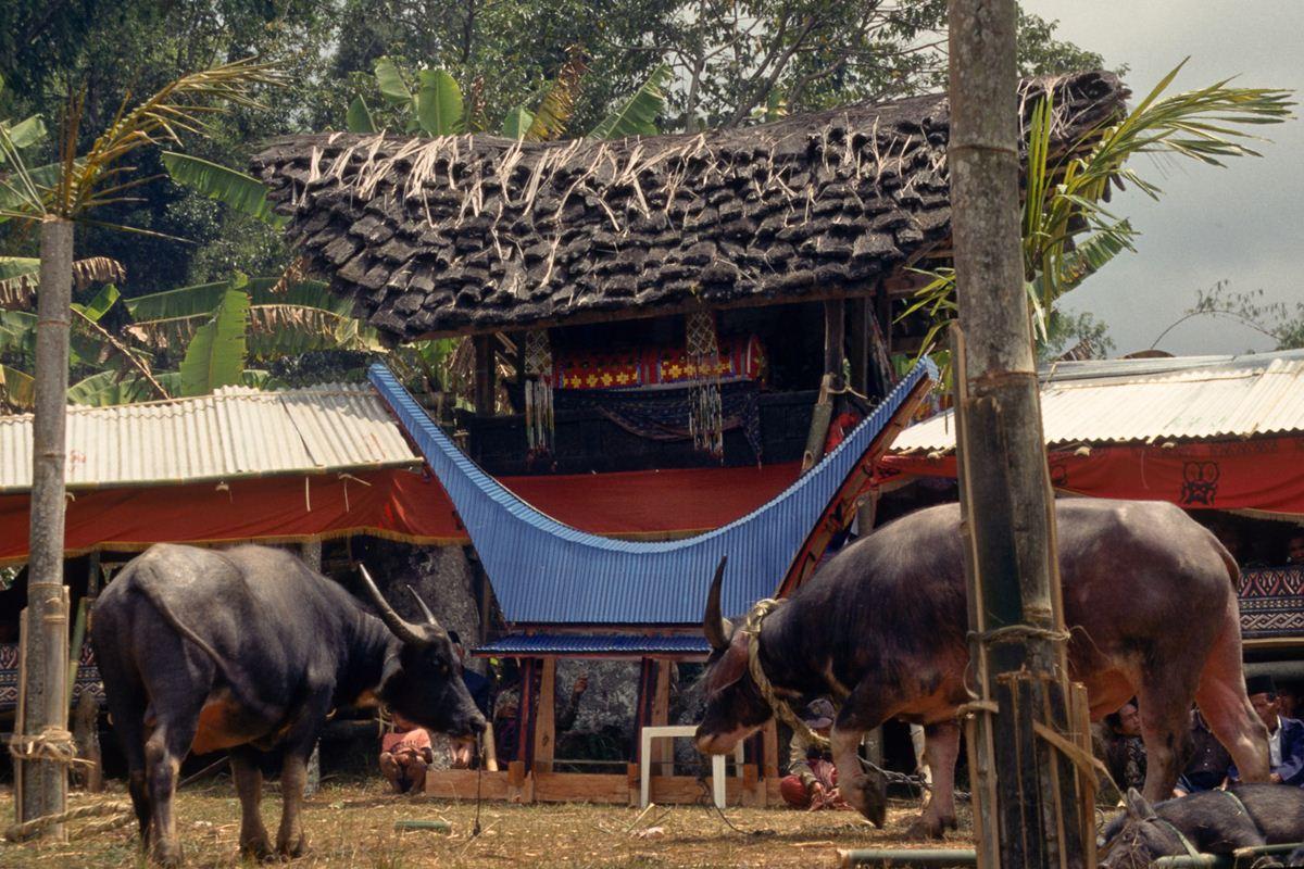 Uma aldeia é construída temporariamente para acomodar centenas de convidados. Segundo as tradições, a casa que abriga o caixão não deve tocar o chão