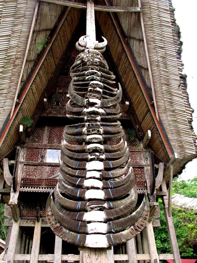 Uma tongkonan, em Puang Ri Kesu com 400 anos de idade. A quantidade de chifres é uma demonstração de status