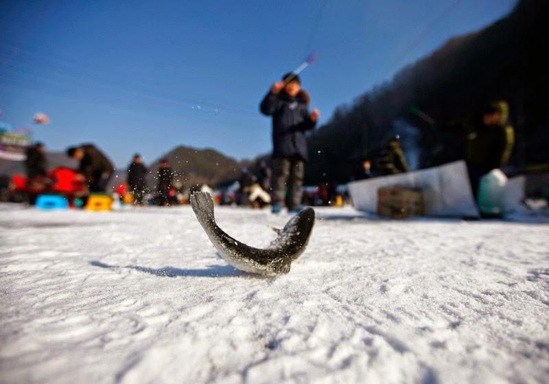 sancheoneo-ice-festival_007