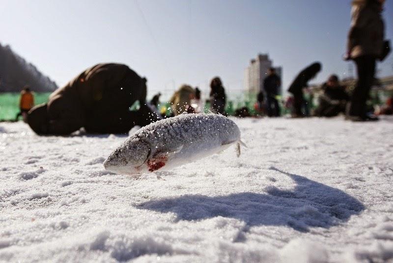 sancheoneo-ice-festival_008