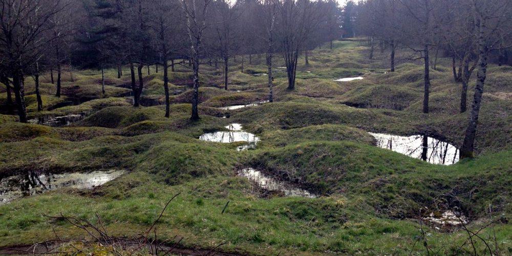 As cicatrizes da Batalha de Verdun
