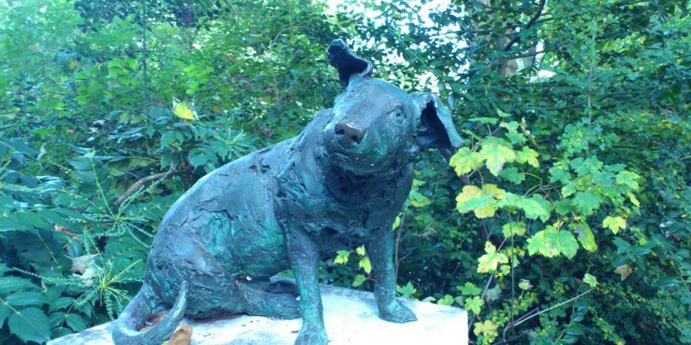 Pequeno cão marrom, memorial contra o sofrimento dos animais