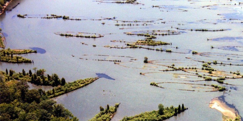 A frota fantasma de Mallows Bay