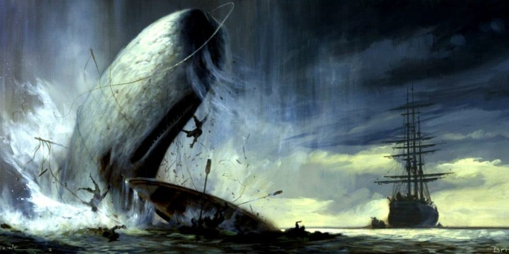 Mocha Dick, a baleia que inspirou Moby Dick