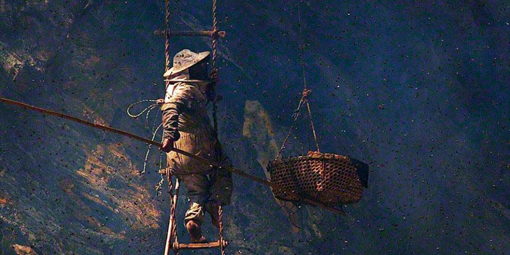 Gurung, os caçadores de mel